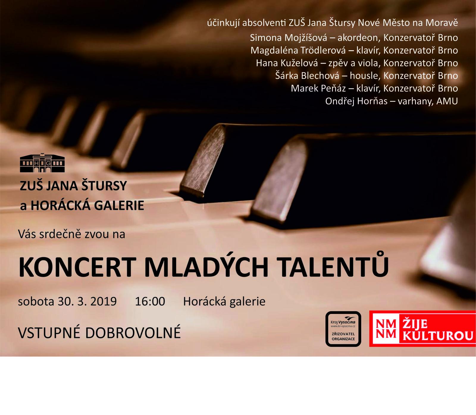 koncert mladých talentů.jpg